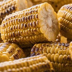 Halbe Maiskolben gegrillt (1 kg)